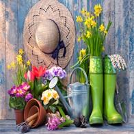 Gardener Singles