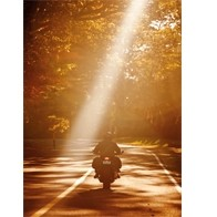 Easy Rider Singles