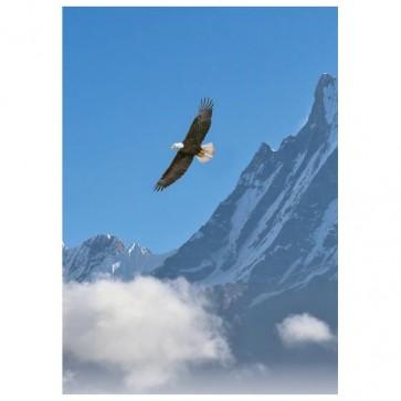 Natures Flight