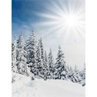 Snowfall Singles