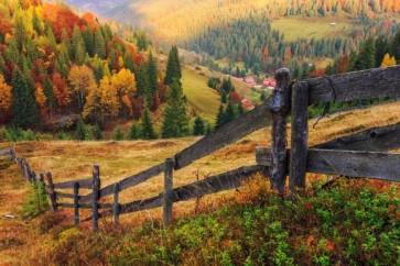 Country Memories Singles